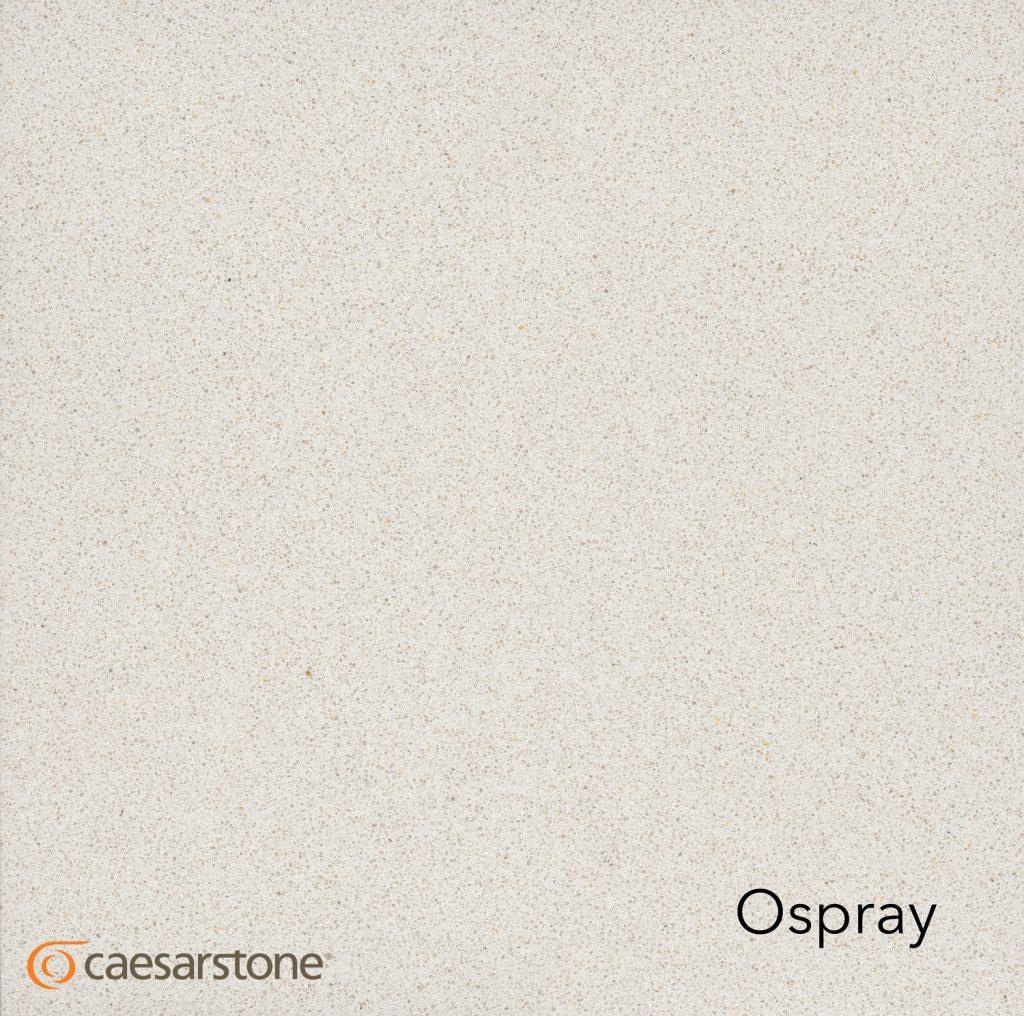 3141---Osprey
