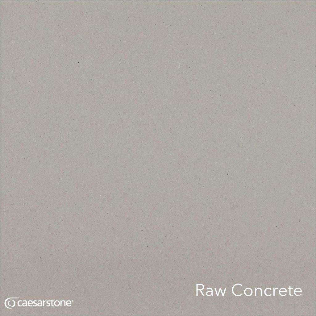 4004_Raw_Concrete_Swatch