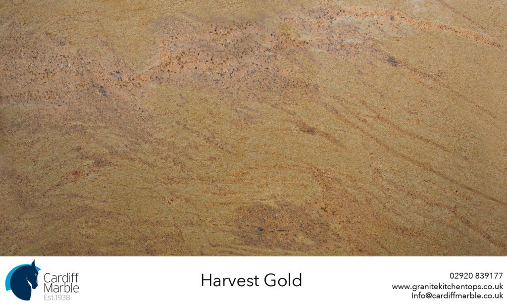 Harvest-Gold-Full-SlabWEB
