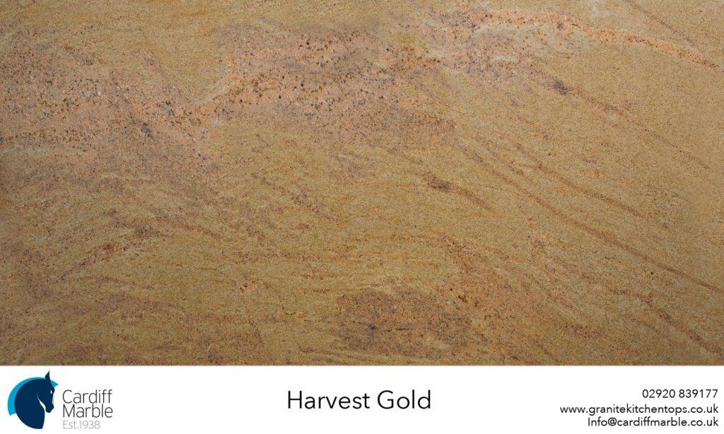 Harvest-Gold-Full-SlabWEB
