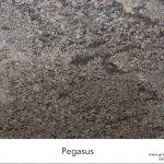 Pegasus-Full-Slab